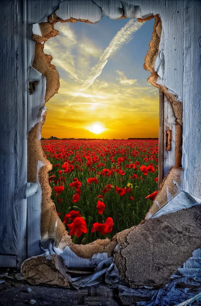 door-1781720_1920